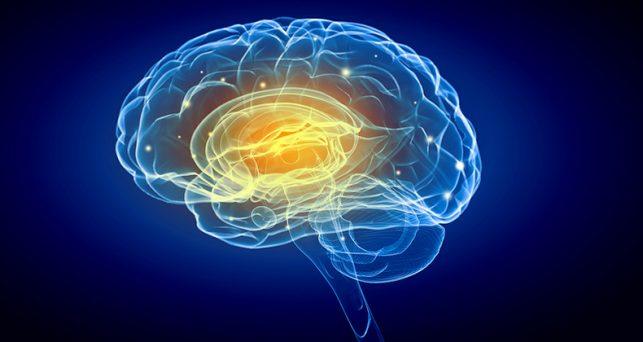 5-formas-sorprendentes-tu-lugar-trabajo-influye-tu-cerebro