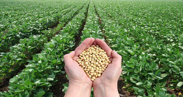 agricultura-convoca-ayudas-valor-2-millones-crear-organizaciones-productores