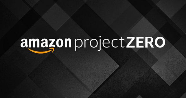 amazon-project-zero-falsificaciones