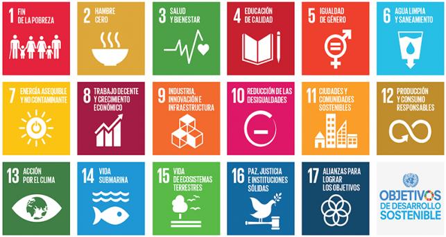 automatizacion-medicion-impacto-sostenibilidad
