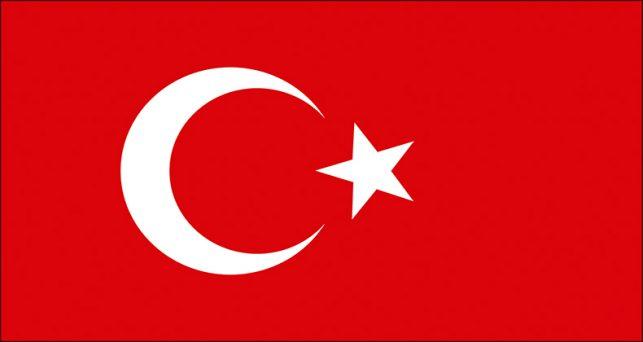 ceoe-lanza-programa-formacion-ayudar-las-empresas-quieran-operar-turquia