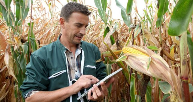 digitalizacion-big-data-la-agricultura