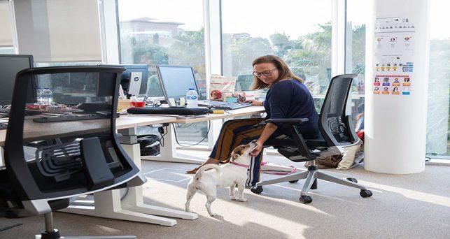 empleados-llevan-mascota-oficina-muestran-mas-satisfaccion-trabajo