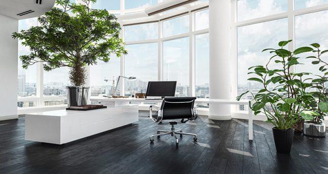 espacios-trabajo-resultan-menos-determinantes-que-otras-condiciones-laborales