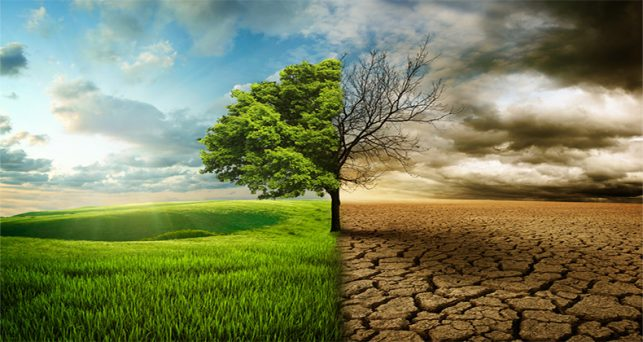 gobierno-aprueba-una-linea-financiacion-proyectos-contribuyan-la-lucha-cambio-climatico