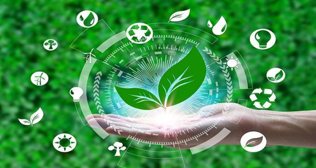 identificar-productos-sostenibles-responsables-medioambiente
