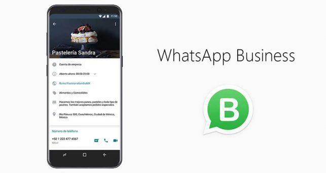 vender-whatsapp-business-navidad